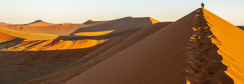 Bruce Gewertz, MD - Desert